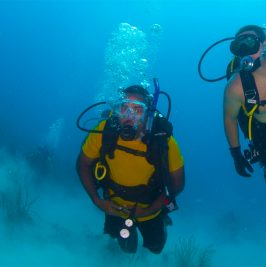 Discover Scuba Diving (Single Dive)