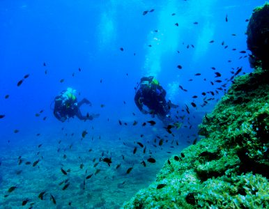 Open Water 2 Dives (same day)