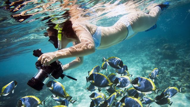 Tips for taking great underwater photographs