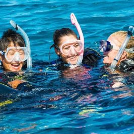 Discover Scuba Diving (Σκάφος)
